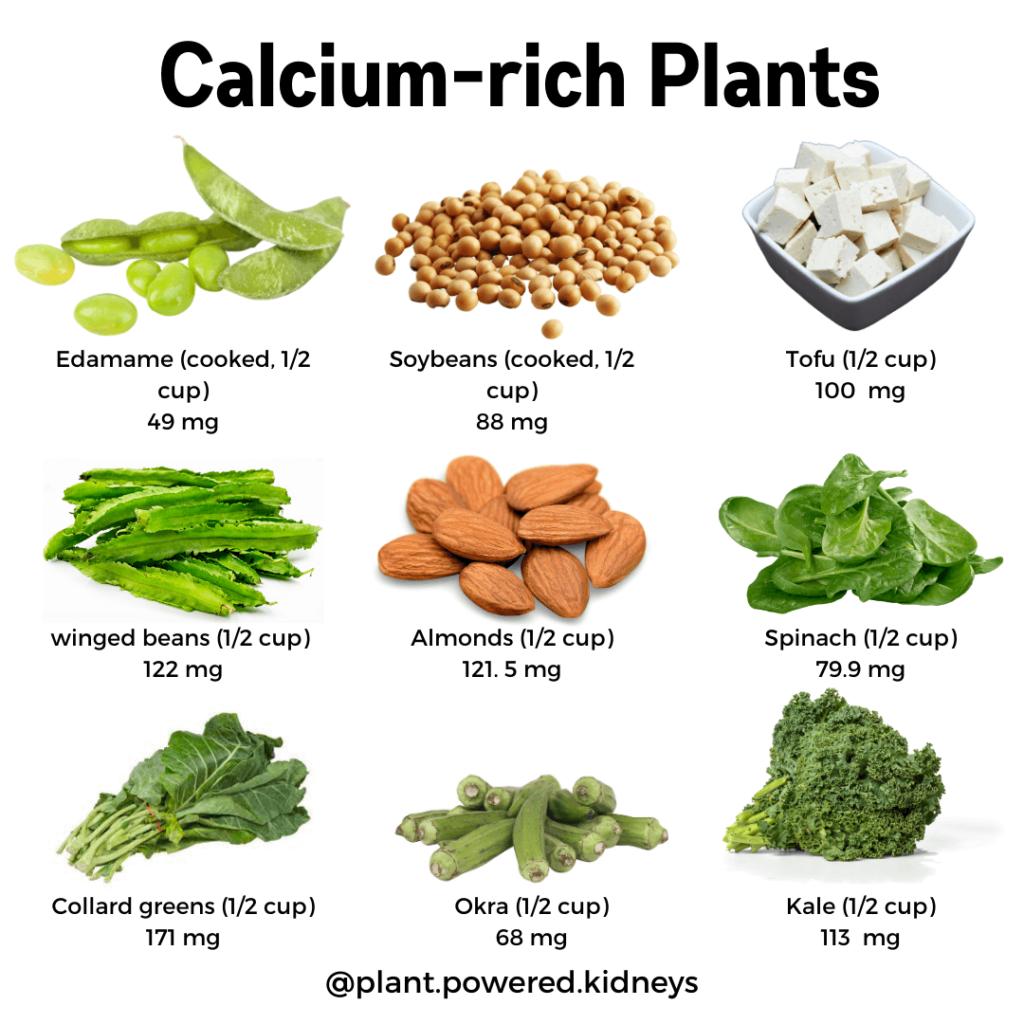 List of Calcium-rich plants