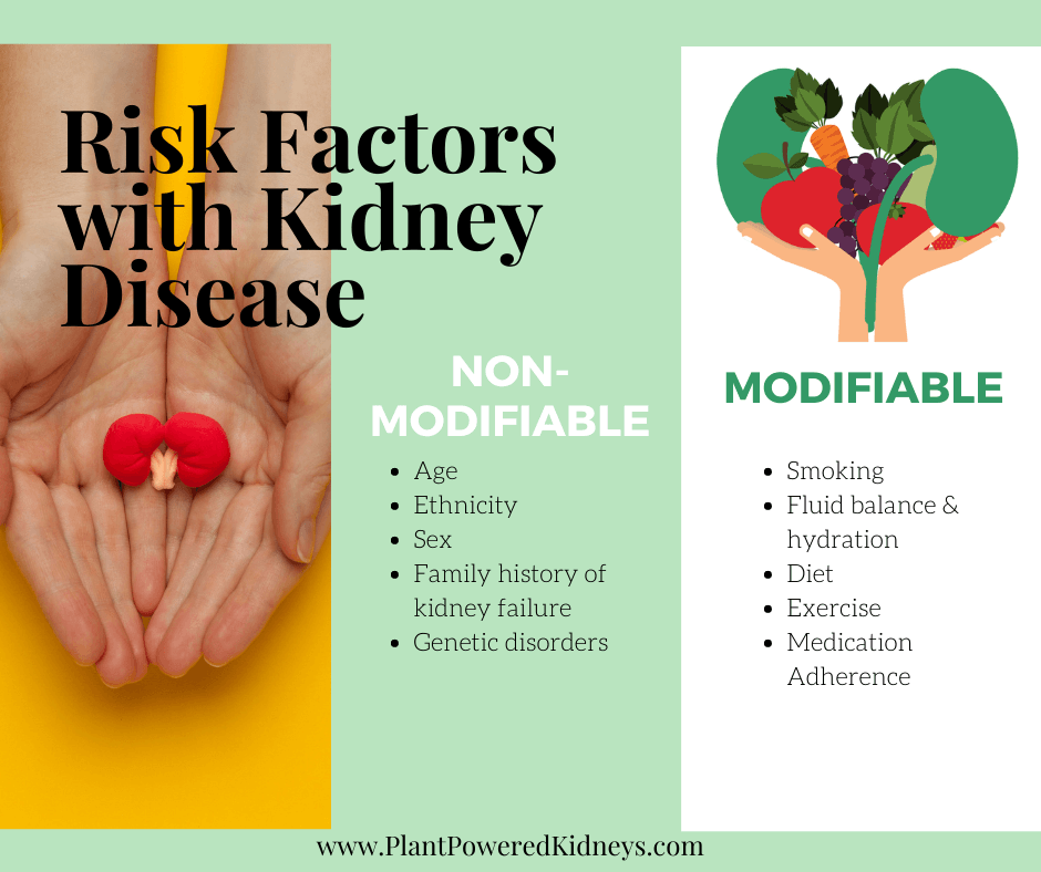 There are two types of risk factors for kidney disease: modifiable and non-modifiable. Modifiable are the ones to pay attention to as we can make changes. Examples include smoking, fluid balance, diet, exercise, and medication adherence.   Non-modifiable, like our age, ethnicity, and family history of kidney issues, cannot be changed. Let's focus on the things we can control!